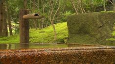 8 Hours Best Zen Music Garden For Meditation And Martial Arts