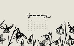Desktop Wallpaper: January 2016 Calendar | Sea of Atlas