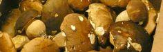 #ChefdiTER recipe: Tagliatelle con salsa ai funghi porcini, di Cornelia