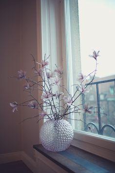 fjädrar i klasar, uttryckta för att bilda blommor