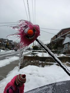 No one is safe during Toronto ice storm 2013!