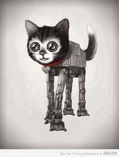 9gag: CAT-CAT