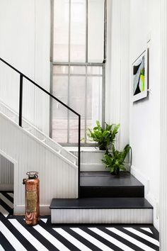 plants on stairs.