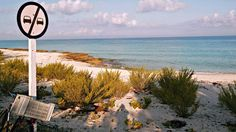 Maria la Gorda beach, Cuba. Photo by Ovidiu Balaj. Garlictrail.com