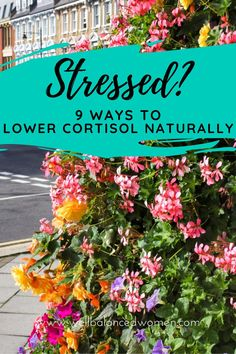 The #stresshormone #cortisol is responsible for making you feel tired, sluggish, and just plain wiped out. If you're #stressedout all the time (and who isn't!?), you have too much cortisol. Here are nine #stressrelief ideas that can help you feel better fast!  #reducestress #stressrelieftips #womenshealth #anxiety #hormones #balancehormones #stressreduction #lowerstress #howtoreducestress #energyboost #lowercortisol #bellyfat Stress Relief Tips, Stress Causes, Chronic Stress, Stress And Anxiety, Reducing Cortisol Levels, Dealing With Stress, Alternative Therapies, Wipe Out, Healthy Lifestyle Tips