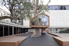 Casa sull'albero in Israele Un pino esistente sostiene la casa sull'albero progettata da Ifat Finkelman e Deborah Warschawski per l'ingresso della Youth Wing for Art Education dell'Israel Museum di Gerusalemme.