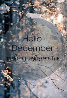 hello december,winter,christmas,snow Hello December Tumblr, Hello December Images, December Pictures, Hello November, Happy December, Paper Cutting, December Wallpaper, Welcome December, Christmas Phone Wallpaper