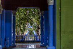Jardin Majorelle - Bezaubernde Stadtoase - Reisetipp Mopeds, Marrakech, Planting, Magic, Beautiful, Gardens, Luxury, Donkeys, Travel Tips