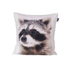 Obliečka Coon 45x45cm     #vankuse#dremandfun#obyvacka#detskaizba#spalna Throw Pillows, Fun, Toss Pillows, Cushions, Decorative Pillows, Decor Pillows, Scatter Cushions, Hilarious