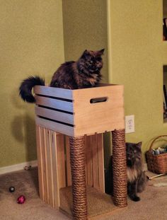 We used two crates from Jo-Ann Fabric and Crafts. We used two crates from Jo-Ann Fabric and Crafts, two dowels from H - Diy Cat Bed, Cat Beds, Cat Scratcher, Cat Room, Cat Condo, Cat Furniture, Furniture Stores, Woodworking Projects, Wood Projects