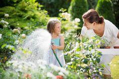 Poradnik: Jak oszczędzać wodę w ogrodzie? #ogród #woda #nawadnianie #podlewanie #rośliny