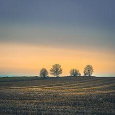 Vreta kloster #östergötland #visit_sweden #visit_östergötland #sweden #field #landscape #igcssweden .  #fiftyshades_of_nature  #fiftyshades_of_macro #tree_magic #tv_charmingfences #nature #trees #ww_nature_miracles #Moody_nature #heart_imprint #The_gallery_of_magic #fingerprintofgod #goandcapturethelight #pocket_allnature #flower_pixels #hugs_for_trees #moody_tones #visualspa #nature_brilliance