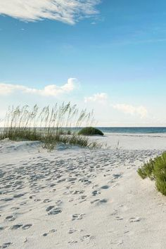 Enter into seclusion with your very own cottage in Rosemary Beach, Florida.