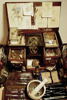 Antique Curio Cabinets - Foter