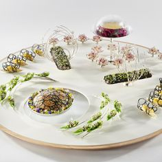 #bocusedor #bocusedoreurope2018 #contest #gastronomy #chefs #food #cooking #teamdenmark #platter ©Studio Julien Bouvier Bocuse Dor, Laundry Room Inspiration, Food Plating, Chefs, Food Art, Delicious Food, A Table, Beverages, Food And Drink
