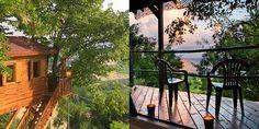 9 Tree House Rentals That Would Make Tarzan Jealous