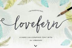 Lovefern Font + SWASHES - Script - 1