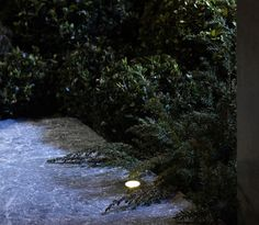 Uses 0.5 Watts total. 40mm Width x 42mm Height. The Atira stainless steel up light is perfect for surrounding a garden feature like your garden bench or to line your pathway. Made from aluminium and glass for covering the lighting. This product is IP68 rated for outdoor use and for use underwater to a depth of 0.5m. Low voltage, which makes it completely safe and very simple to install, even for beginners.