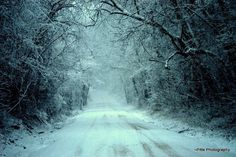 Winter in Kansas. So pretty. The trees wear ice like diamonds and snow on the ground.