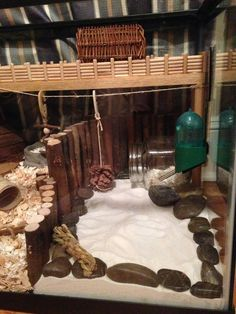 Watch me build up my tank! :) - Page 5 - Hamster Central - Watch me build up my tank! 🙂 – Page 5 – Hamster Central - Habitat Du Hamster, Hamster Tank, Dwarf Hamster Cages, Cool Hamster Cages, Gerbil Cages, Syrian Hamster, Hamster Stuff, Diy Hamster House, Chinchillas