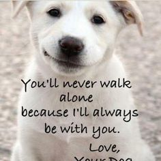 You'll Never Walk Alone.... I love my Charlie so incredibly much!