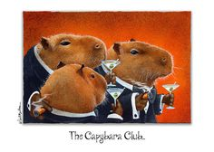 The Capybara Club... Greeting Card for Sale by Will Bullas