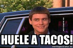 meme risa jaja jim carrey tacos