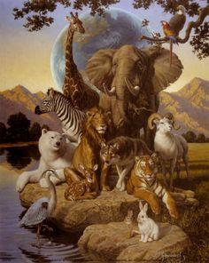 Animals love photos: African animals