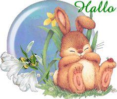 Das Gästebuch von Sandymaus aus Balve, Deutschland auf Brieffreunde.de Easter Bunny Pictures, Bunny Images, Images Gif, Gif Greetings, Hello Pictures, Easter Hunt, Bunny Art, Cute Gif, Cute Illustration