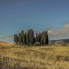 Tuscany is a dream #awesome_earthpix #igglobalclubhdr #myflagrants  #hubs_united #igbest_shotz #ig_shotz_octb16 #fantastic_earth #main_vision #loves_united_team #love #fabulous_shots #bns_family #nature_of_our_world #naturewhisperers #splendid_horizon #splendid_earth #wonderful_places #marvelshots #igpodium  #landscape_captures #loves_landscape #nature_perfection #excellent_nature #visual_magic #nature_uc #nature_up_close #nature_obsession_landscapes #earthexperience #ig_lebanon…