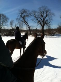My buddy and I. Old Westbury, Long Island, February 2013