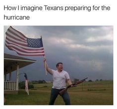 Memes Memes Memes
