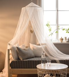 A canopy and a day bed sit in front of a window.