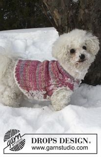 """Knitted DROPS dog's vest in """"Fabel"""" and """"Baby Merino"""" with edges in """"Symphony"""". Size XS - L. ~ DROPS Design"""