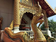 Finding my stride in Chiang Mai   slightly astray
