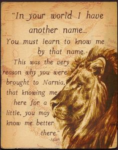 "C.S. Lewis said that Aslan did not ""represent"" Christ. The way he explained it to one child was to imagine that there was a place called Narnia and in it, Christ appeared in the form of a Lion. Aslan IS Christ as he appears in Narnia"