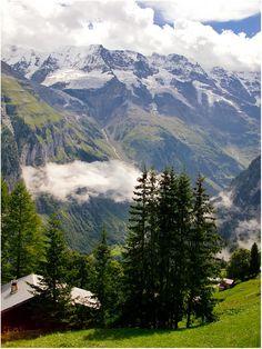 Alpenblick vom Mürren 1650m Berner Oberland