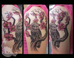 42 Best Owl On Cherry Blossom Tree Tattoo Images Blossom Tree