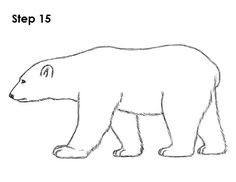 super ideas for baby drawing illustration polar bears Polar Bear Outline, Polar Bear Drawing, Polar Bear Tattoo, Cute Polar Bear, Baby Drawing, Drawing For Kids, Polar Bears, Polar Bear Coloring Page, Bear Coloring Pages