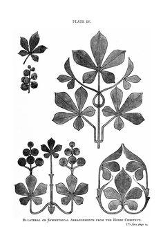 Botanical - Leaf - Border design 1