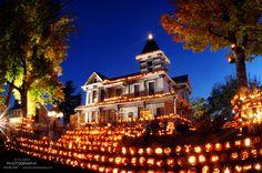 The Pumpkin House in Kenova, WV displays 3,000 pumpkins each year!