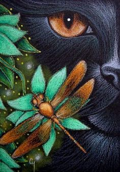 Colored Pencil Drawings | Art: BLACK CAT KATZE - DRAGONFLY - FLOWERS 2 by Artist Cyra R. Cancel