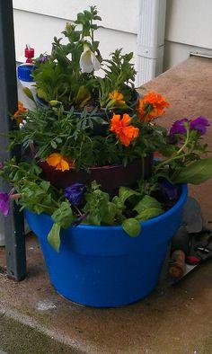 Tier Flower pots