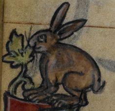Rabbit enjoying the marginal decoration. @BLMedieval Stowe MS 17, f. 174v http://www.bl.uk/manuscripts/Viewer.aspx?ref=stowe_ms_17_fs001r…