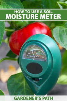 Who hasn't had a hard time at some point with trying to keep their plants watered appropriately? If you regularly forget to water or you keep giving your plants too darn much, get yourself a soil moisture meter. These garden tools take the guesswork out of watering for happier plants. #hygrometer #garden #gardenerspath Vegetable Garden For Beginners, Gardening For Beginners, Gardening Tips, Low Maintenance Landscaping, Landscaping Tips, Types Of Herbs, Soil Improvement, House Plant Care, Garden Soil