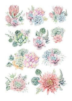 Tumblr Stickers, Diy Stickers, Printable Stickers, Succulents Drawing, Watercolor Succulents, Journal Stickers, Planner Stickers, Watercolor Illustration, Watercolor Art