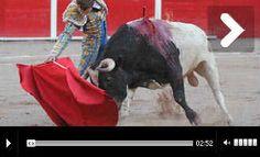 AGUASCALIENTES Ovacionados en el arranque Saldívar y El Payo, matices en la apertura - Mundotoro.com #toreros #toros #videos #fotos  Fotografías de la apertura de feria en 'Aguas' http://www.mundotoro.com/auxiliar/galerias2013/aguascalientes20042013/index.html
