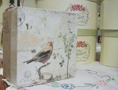 Mister Bird we await your Singing! Spring Is Here, Spring Colors, Vintage World Maps, Singing, Bird, Beautiful, Birds, Birdwatching, Spring Flowers