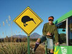 Viajar y trabajar al mismo tiempo: Working Holiday Visa para Nueva Zelanda y Canadá.
