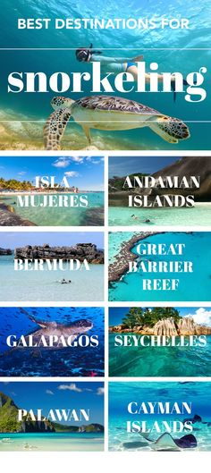 Best Snorkeling Spots in the World Incredible snorkel spots around the world.Incredible snorkel spots around the world. Vacation Destinations, Dream Vacations, Vacation Places, Holiday Destinations, Top 10 Vacation Spots, Tropical Vacations, Holiday Places, Vacation Resorts, Vacation Trips